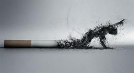 Влияние Курения на Организм Человека — 5 Страшных Последствий