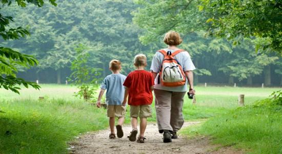 экология и здоровый образ жизни