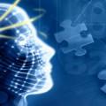 Главные Факторы Формирующие Здоровье Человека