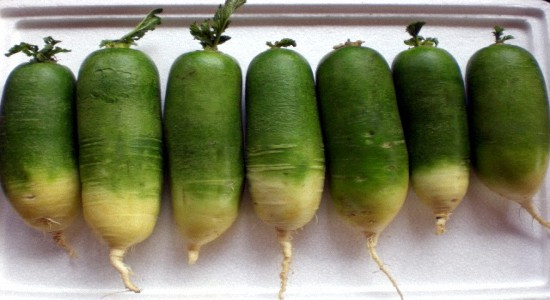 здоровое питание зелёная аптека