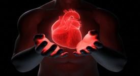 Как Укрепить Сердечную Мышцу? — Проверенные Рекомендации