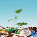 Экология и Здоровье Человека – Опасности Вокруг Нас