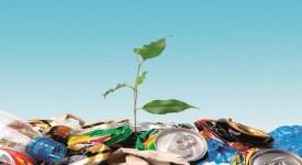 Экология и Здоровье Человека — Опасности Вокруг Нас