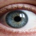 Правила Гигиены Глаз – 8 Важных Рекомендаций