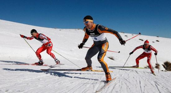 Как купить лыжи для конькового хода