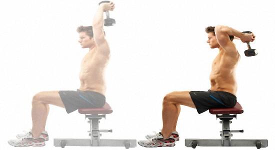 Эффективные упражнения с гантелями для мужчин