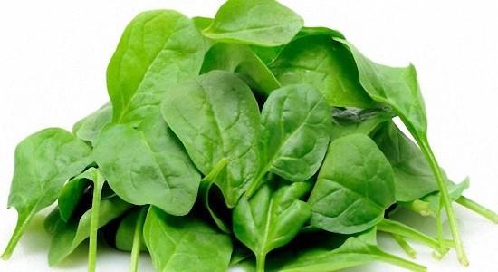 Доказанная польза шпината для здоровья