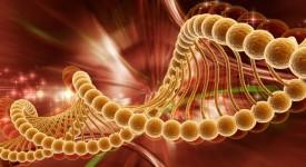 Гаряев, Волновая Генетика для Здоровья
