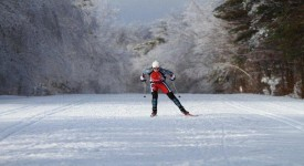 Как Правильно Купить Лыжи для Конькового Хода